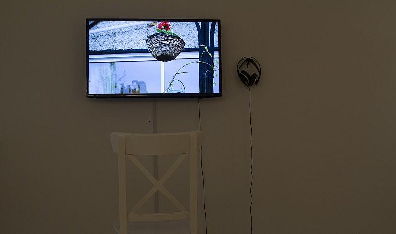 tv_home-is