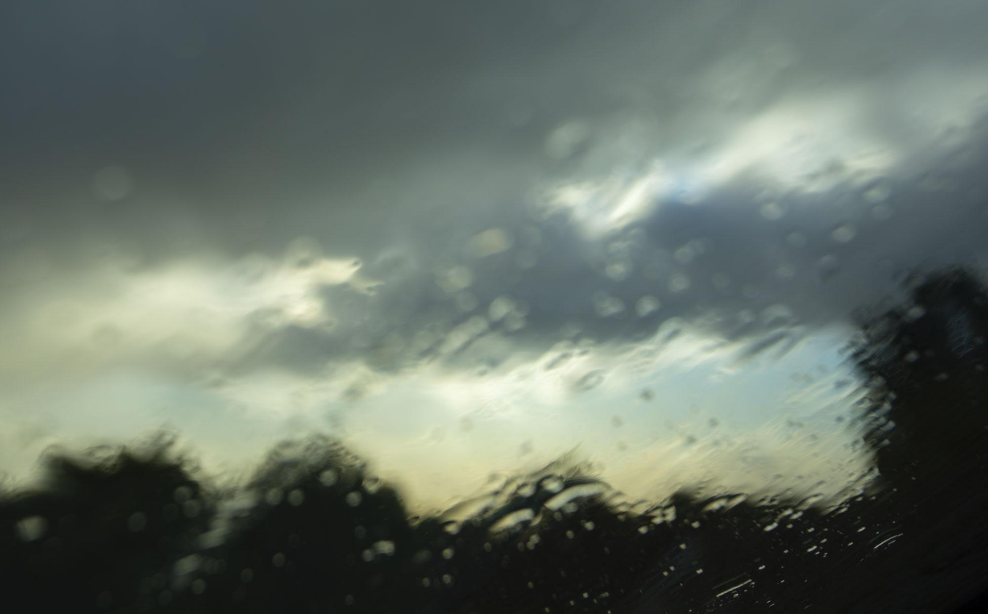 Window_Wonderland