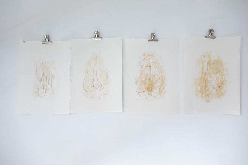 4_berry_drawings