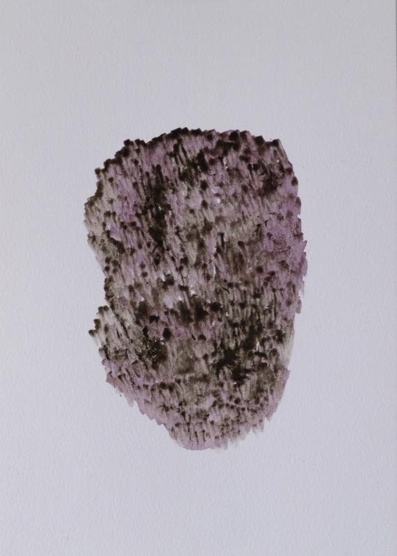 clay_berry_tulip_single_1-180x260